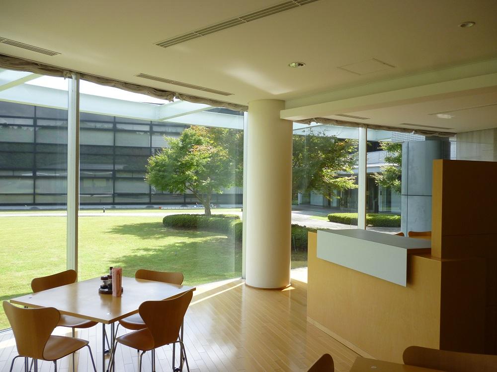 東京都 某施設の食堂の窓 ウインドウフィルム施工 断熱、飛散防止フィルム
